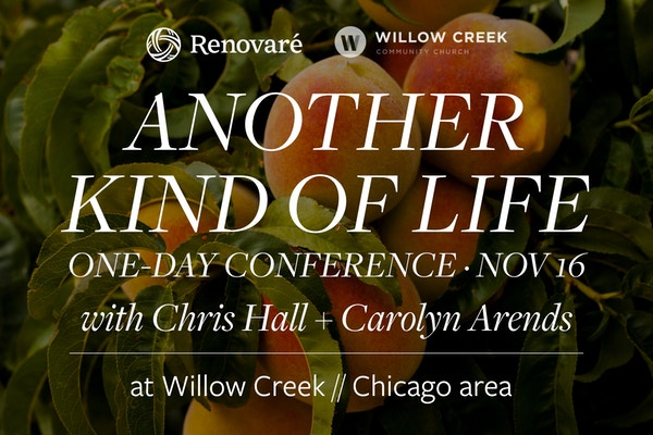 2019 11 Chicago Another Life Conf3 Willow Logo