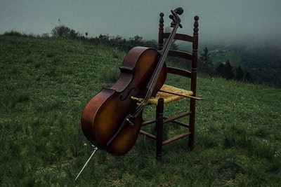 Cello in fog